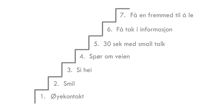 trappetrinnene_eksempel_sfa